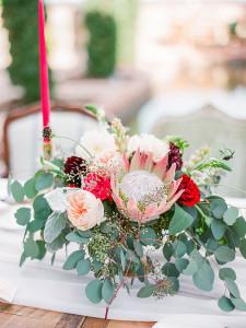 Pretty Proteas
